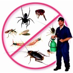 pestcontrolsurat